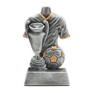 Voetbal sportprijs