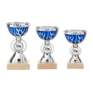 Sportprijs zilver met blauw