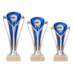 Sportprijzen met blauwe details